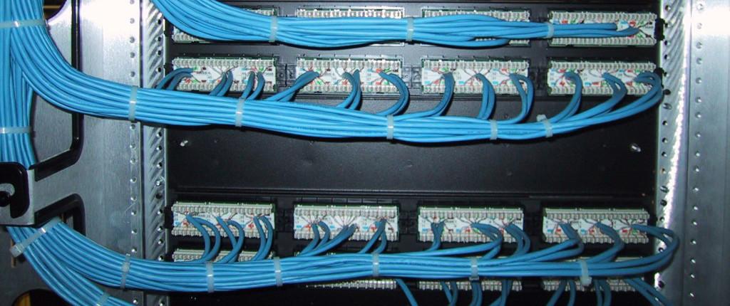 Organized Blue Wiring