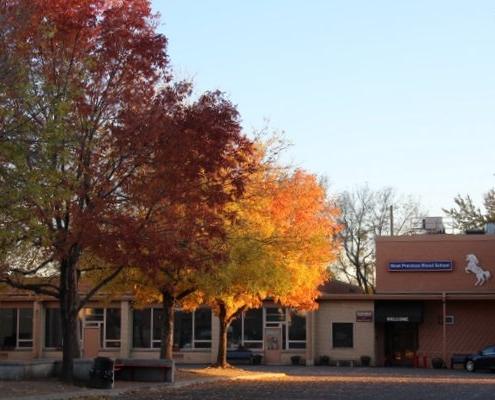 Campus of MPB School