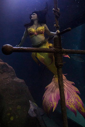 Mermaid Maren