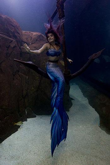 Mermaid Nixie