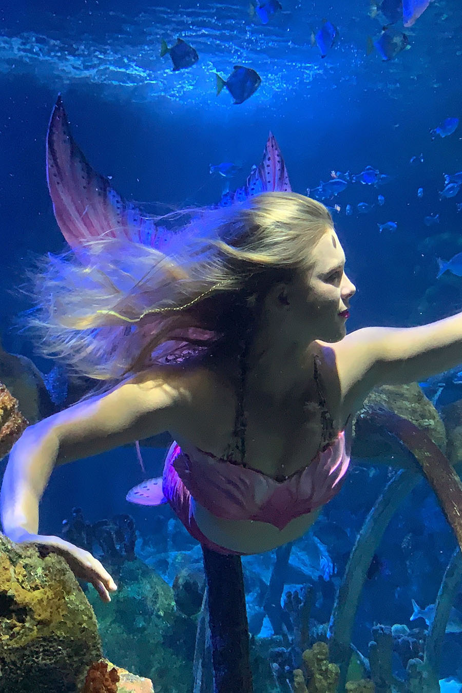 Mermaid Kai