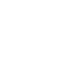 SEC White Emblem